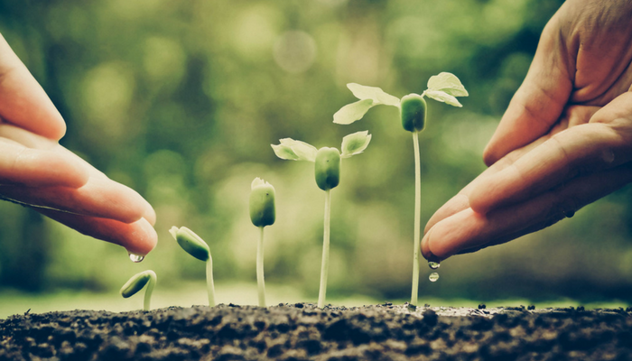 5 Signs You're Ready to Add Lead Nurturing to Your Marketing Strategy